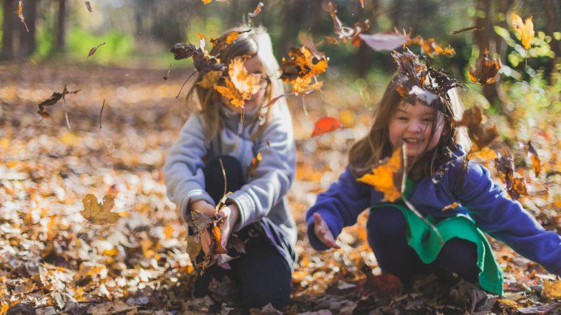 To børn leger med blade i skov
